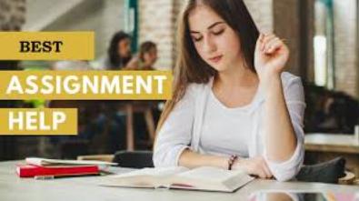 best business statistics assignment help
